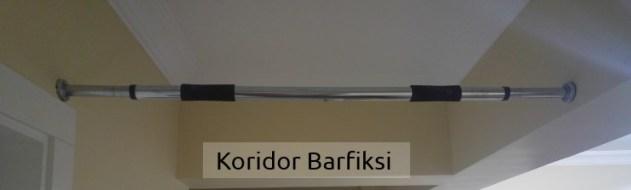 koridor-barfiks